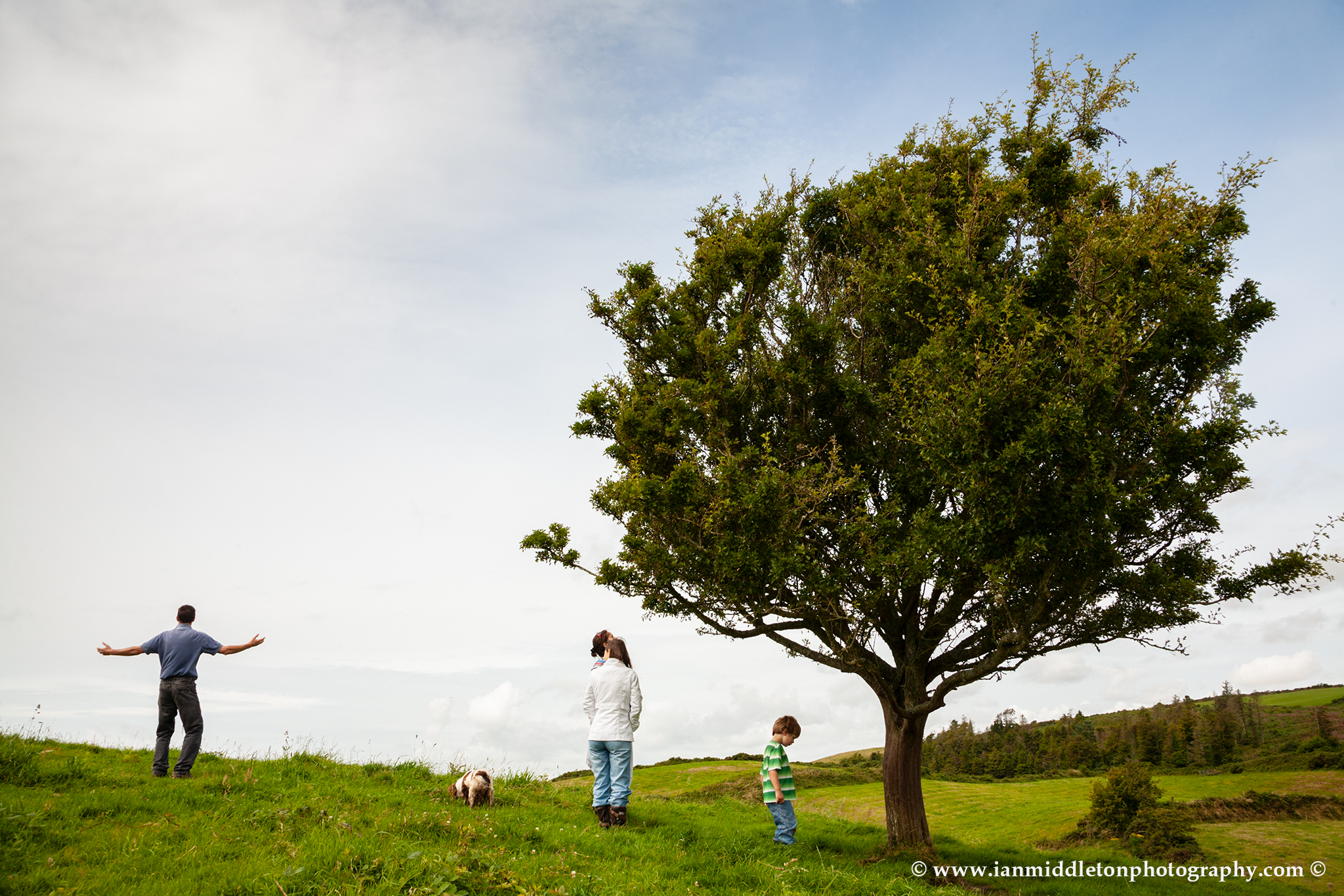 The Fairy Tree in County Wexford