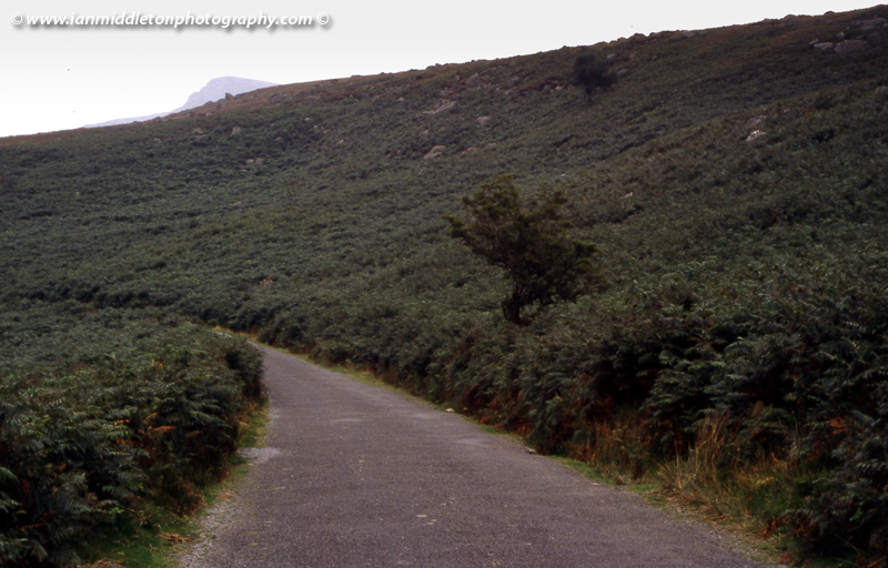 Magic Road in the Comeragh Mountains, County Waterford, Ireland.